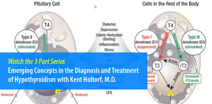 Emerging Concepts in the Diagnosis and Treatment of Hypothyroidism with Kent Holtorf, M.D.