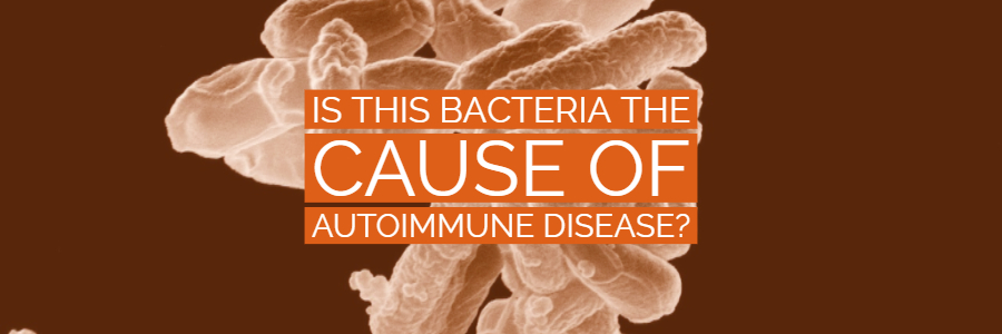 Is This Gut Bacteria The Cause of Thyroid-Related Autoimmune Dysfunction?